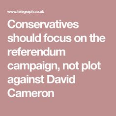 Conservatives should focus on the referendum campaign, not plot against David Cameron David Cameron, Campaign, Europe