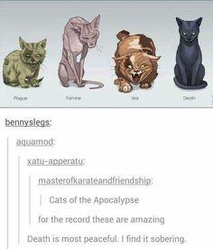 Funny Animals, Cute Animals, Wow Art, Warrior Cats, Tumblr Posts, Mythical Creatures, Amazing Art, Awesome, Mythology
