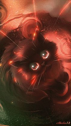 Ideas for cats orange pictures Pet Anime, Anime Animals, Cute Animals, Draw Cats, I Love Cats, Cute Cats, Cute Animal Drawings, Warrior Cats, Cat Drawing