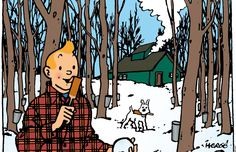 The Adventures of Tintin in Quebec | The duty