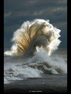 These Perfectly Timed Photos Are Absolutely Real XXXXX Force of Mother Nature ~ epic wave **waves are super hard for me to draw so i want to challenge myself and be able to draw . Image Nature, All Nature, Science And Nature, Amazing Nature, Amazing Photography, Landscape Photography, Nature Photography, Summer Photography, Waves Photography