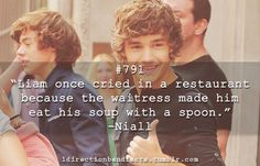 liam payne facts tumblr | Liam's Facts♥ - Liam Payne Photo (31009238) - Fanpop fanclubs