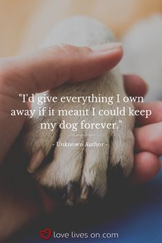 "Beautiful Loss of Pet Quotes - "" You are in the right place about trends men Here we offer you the most beautiful pictures abou - Pet Quotes Dog, Pet Loss Quotes, Dog Quotes Love, Animal Quotes, Losing A Dog Quotes, Love For Animals Quotes, Dog Death Quotes, Quotes About Dogs, Dog Best Friend Quotes"