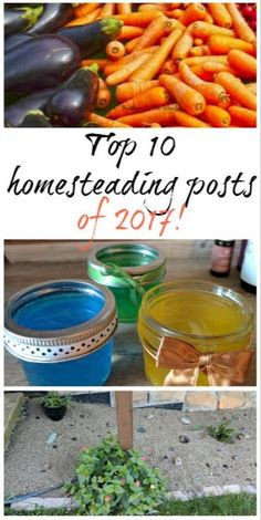 The best homesteading, gardening and natural living posts of 2017!