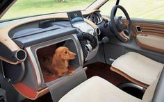The Honda Dog Car comes with a built in dog crate to keep your four-legged co-pilots safe and sound. Hamster, Dachshund Love, Daschund, Funny Dachshund, Dog Owners, Dog Friends, Dog Life, Concept Cars, Your Pet