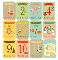 INSTANT DOWNLOAD PRINTABLE Baby Milestone Cards: Monthly Update Cards on Etsy, $9.00