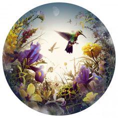 Bright Morning - Natalie Bird - Shop art Color Photography, Nature Photography, Digital Photography, Canvas Art Prints, Fine Art Prints, Nature Artwork, Affordable Art Fair, Modern Artists, Contemporary Artwork