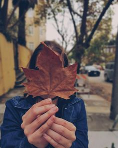 Fall leaves are amazing! #seasons #fall #outono #autumn #fallseason #leaves #coloursofautumn @sorayba