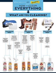 How to Clean Everything2 (4)