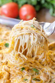 Easy Chicken Spaghetti recipe that is full of flavor and perfect for dinner. This recipe calls for chicken, spaghetti noodles, cream of chicken, salsa, sour cream and cheese making it the epitome of comfort food and a dinner recipe everyone will love! Huhn Spaghetti, Chicken Spaghetti Recipes, Chicken Thigh Recipes, Easy Pasta Recipes, Cooking Recipes, Healthy Recipes, Recipe Chicken, Chicken Spaghetti Casserole, Healthy Food