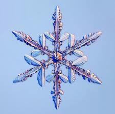 sneeuwkristallen - Google zoeken
