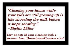 Do you feel like this sometimes?  Visit us to explore the different steam cleaners for home we offer. Decide on one that best suits your needs for keeping a clean and sanitized home.
