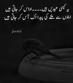 Love Poetry Images, Love Romantic Poetry, Love Quotes Poetry, Best Urdu Poetry Images, Love Poetry Urdu, Eid Jokes, Eid Shayari, Eid Poetry, Urdu Quotes With Images