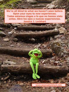 kermit_frog_sit