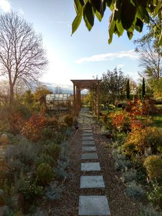 Autunm in Denmark, beautiful pergola and evergreens, the French garden of Henrik and Janne