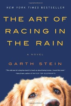 The Art of Racing in the Rain: A Novel by Garth Stein, http://www.amazon.com/dp/0061537969/ref=cm_sw_r_pi_dp_jJt5pb0BTW42J