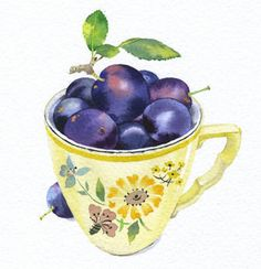 Mary Woodin watercolour illustration