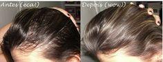 Os estudos que originaram os atuais shampoos em pó que encontramos no mercado hoje têm como base os ...