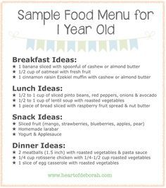 Sample Menu for One Year Old