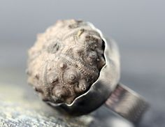 Sea Urchin Fossil in Oxidized Sterling Silver Ring by Specimental