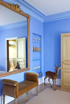 Casinha colorida: Cores vivas nas paredes