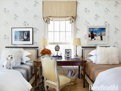 Designer Brian McCarthy's poodle mix, Daisy, sitting in the guest room of McCarthy's home.