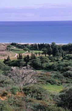 Onyria Palmares Golf i Meia Praia, Faro