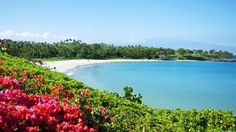 Best Beach Destinations in the US -  Since most of us have a busy lifestyle, beach breaks are great opportunities to recharge our batteries. The beach gives you a feeling of refreshment and rejuvenation. There is nothing like waking in the morning to the view of a beautiful beach and the sounds of waves. If you are looking for...