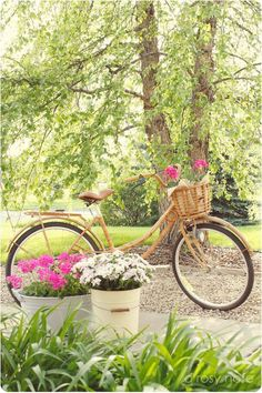 ༺✿ Flower Pedals ✿༻ ༺✿ Baskets of Flowers Riding Bicycles ✿༻