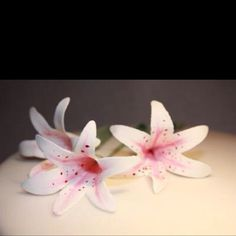 Handmade edible gum paste flowers
