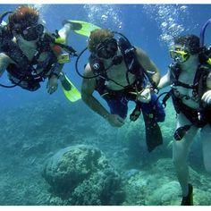 #tbt to scuba diving in the Great Barrier Reef #scubadiving #greatbarrierreef #gbr #australia  by sarasiarkowski http://ift.tt/1UokkV2