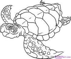 sea life drawings - Google Search