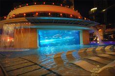 Hotel Golden Nugget in de Verenigde Staten heeft in het zwembad een doorzichtige glijbaan gemaakt die dwars door een tank met vissen en haaien gaat