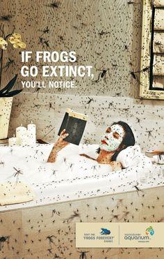 Aquarium ad - if frogs go extinct, you'll notice