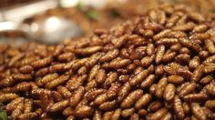 The world's population is increasing at a fast rate and the increased need for protein must be addressed. This article explores the possibility of turning to insects to both directly feed people and to use them as ingredients in food fed to farm animals - Alex Pipcho