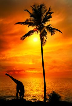 Yoga Urdhva Prasarita Eka Padasana pose by Man in silhouette with palm tree nearby outdoors at ocean and sunset background. Vagator #beaches #goa #india #travel #holidays qnatours@gmail.com