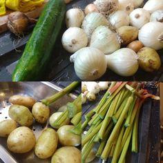 Crps, Allotment, Chronic Pain, Asparagus, Vegetables, Studs, Vegetable Recipes, Veggies