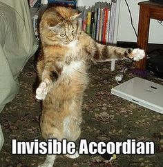 Invisible accoridian