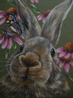 Rabbit Bunny Hare animal Butterfly wildlife print