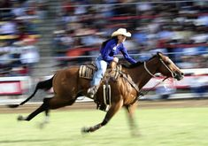 NFR Cowgirl Jody Sheffield - Never Give Up... 2013