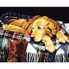 """Paint By Number Kit Labrador Dog Fishing Duck Art DIY Picture 16x20/"""" On Canvas"""