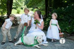 #petfriendly #destinationwedding