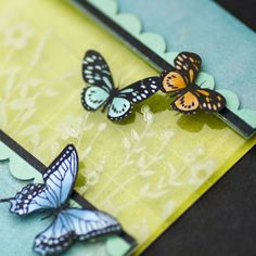 border and butterflies