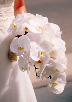 Mrs Hot Wing's all orchid cascade wedding flower bouquet, bridal bouquet, wedding flowers, add pic source on comment and we will update it. www.myfloweraffair.com can create this beautiful wedding flower look.