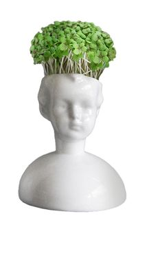 Cresshead comes with a pack of cress seeds and cotton wool to get your hair growing.   Fine bone china. £24. To buy online http://www.culturelabel.com/cresshead.html