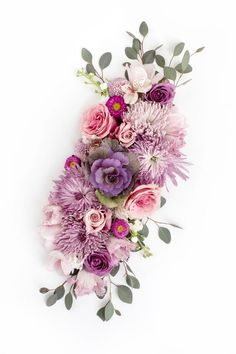 Floral branding images in various colors! Floral styled stock is the most versatile and can be used across brands! Shop the SC Stockshop's floral stock images! Flowers Nature, My Flower, Purple Flowers, Flower Art, Beautiful Flowers, Purple Flower Arrangements, No Rain, Arte Floral, Planting Flowers