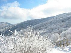 Jirisan National Park, Korea. Beautiful!