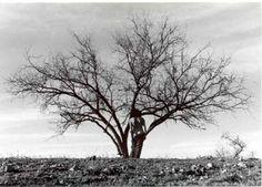 Debranne Cingari, Weathered I, 2001, Ed. 1/10, silver gelatin photograph, 20 X 30 inches