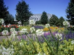 DENVER BOTANIC GARDENS, Denver, #Colorado #iGottaTravel Atlanta Botanical Garden, Botanical Gardens, Beautiful Places, Most Beautiful, Denver Botanic Gardens, Gardens Of The World, Plant Information, Public Garden, Beautiful Landscapes