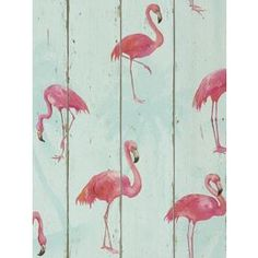 Tesco direct: Rasch Barbara Becker Flamingo Wallpaper Teal 479706